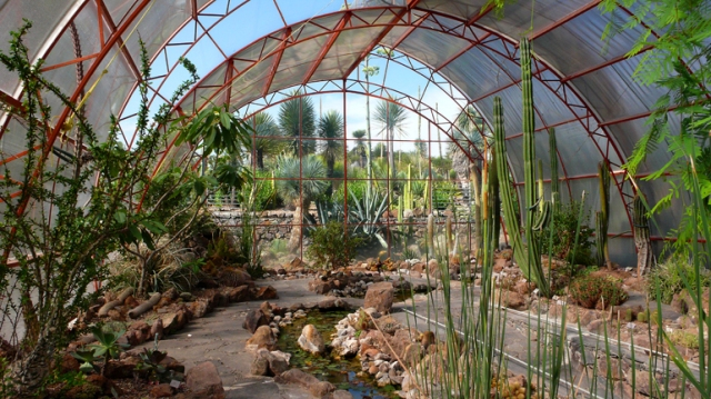 6 CharcoGreenhouse
