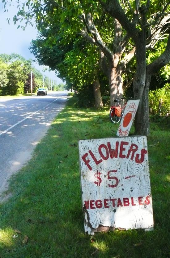 FlowerSign